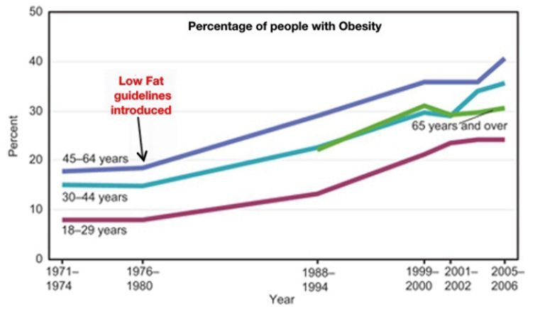 Graph showing rise in obesity in the United States from Charlie's website