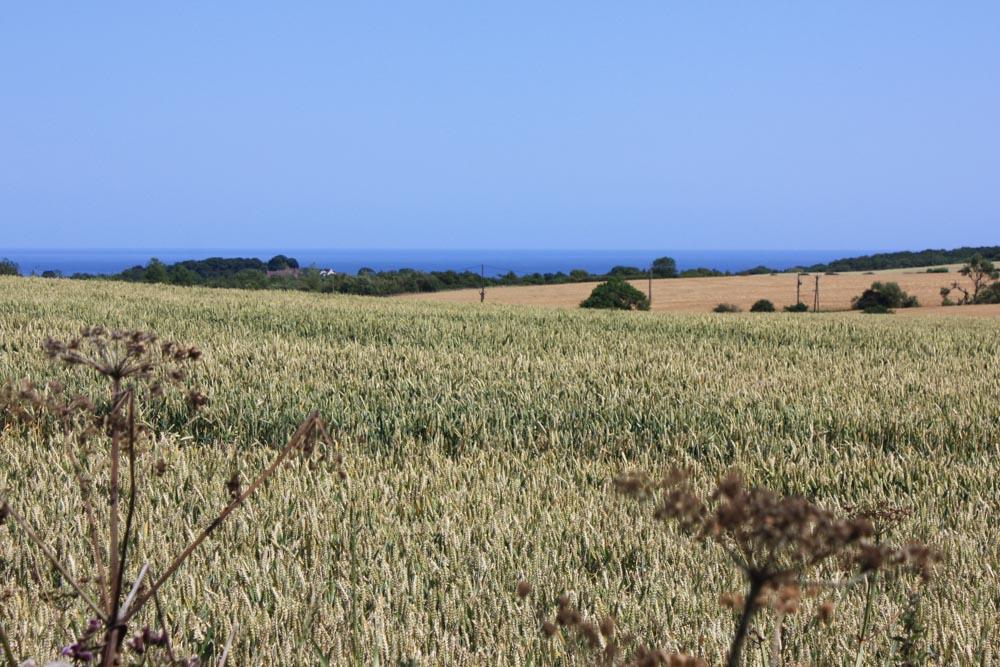 Scenery near Sunderland