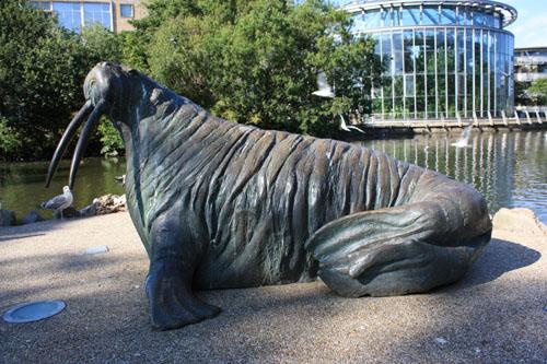 Walrus Mowbray Park