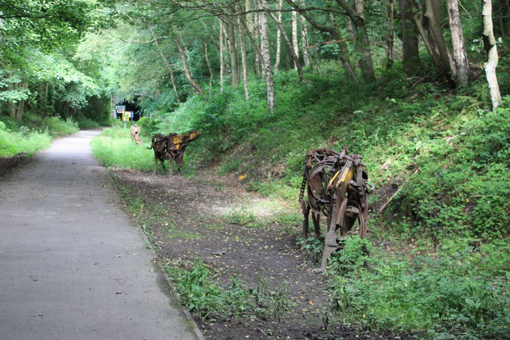 JCB cows near Beamish