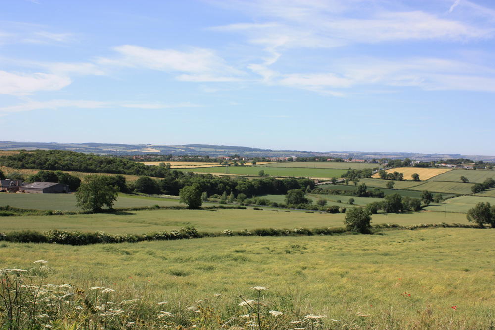 View from Ferryhill