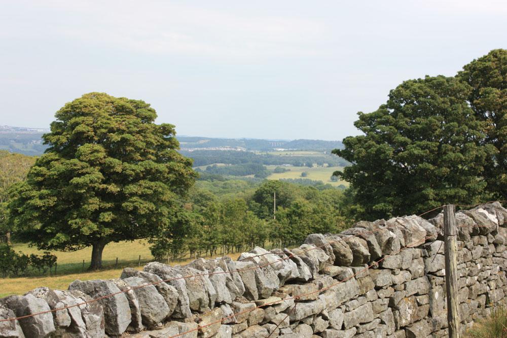 Muggleswick scenery