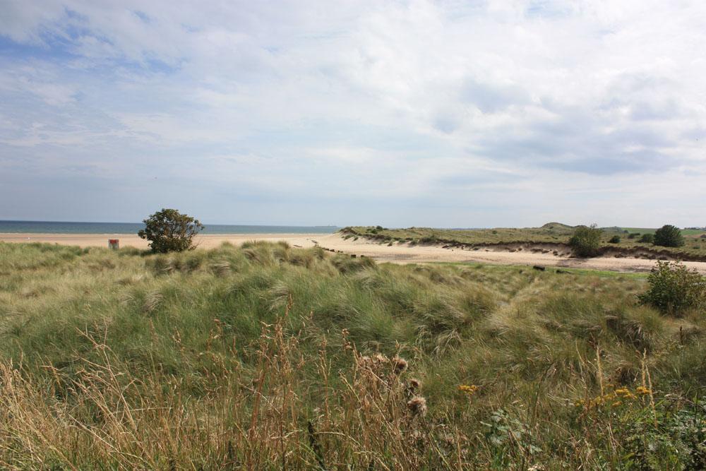Dunes Alnmouth.