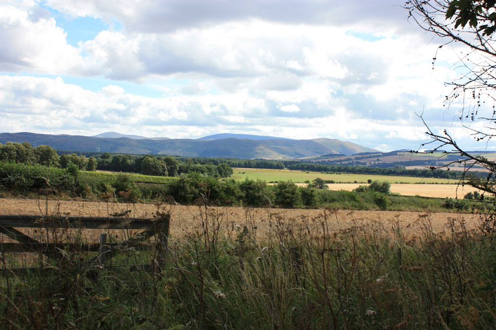 The Cheviots viewed from Ford.