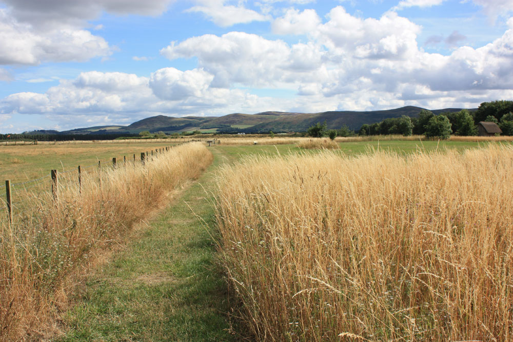 Milfield Plain, site of Maelmin