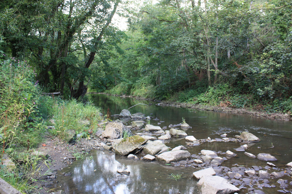 River Blyth near Bedlington.