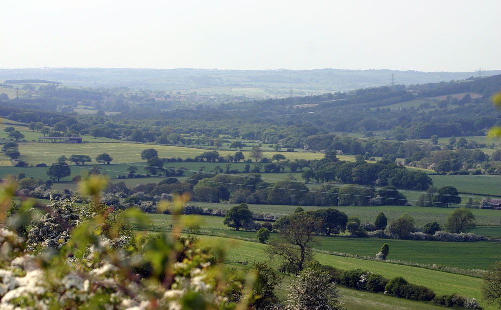 The Browney Valley