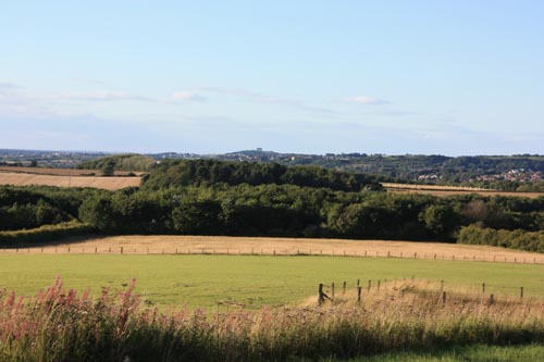 A view across the countryside from High Moorsley not far from Mary Ann Robson's birthplace. Phot: David Simpson