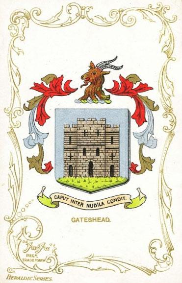 Gateshead Arms Goat's Head