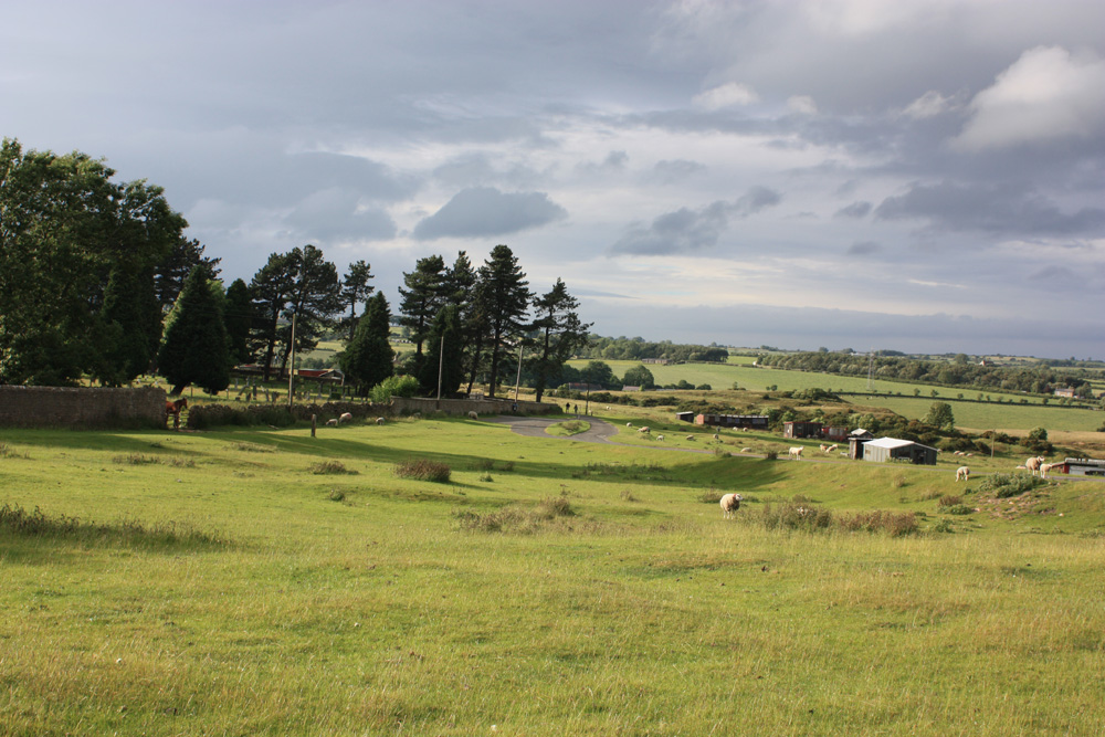 Pigeon lofts, grazing sheep and horses on Cockfield Fell