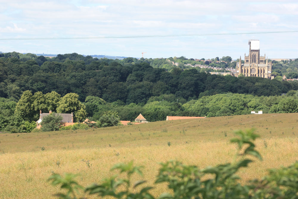 Old Durham Farm and Durham Cathedral