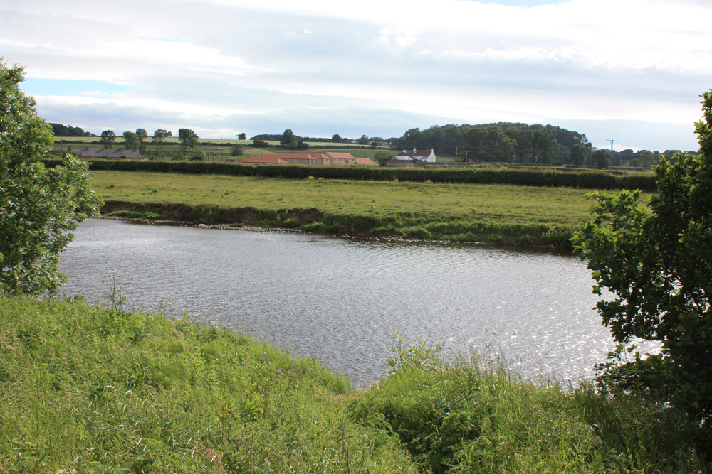 The River Tees at High Coniscliffe