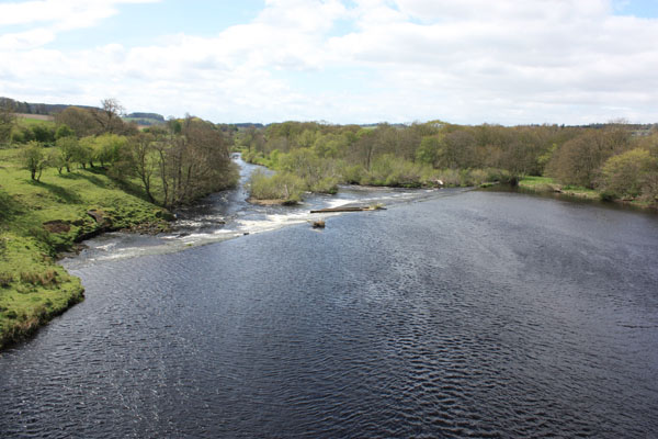 The Tyne near Chesters