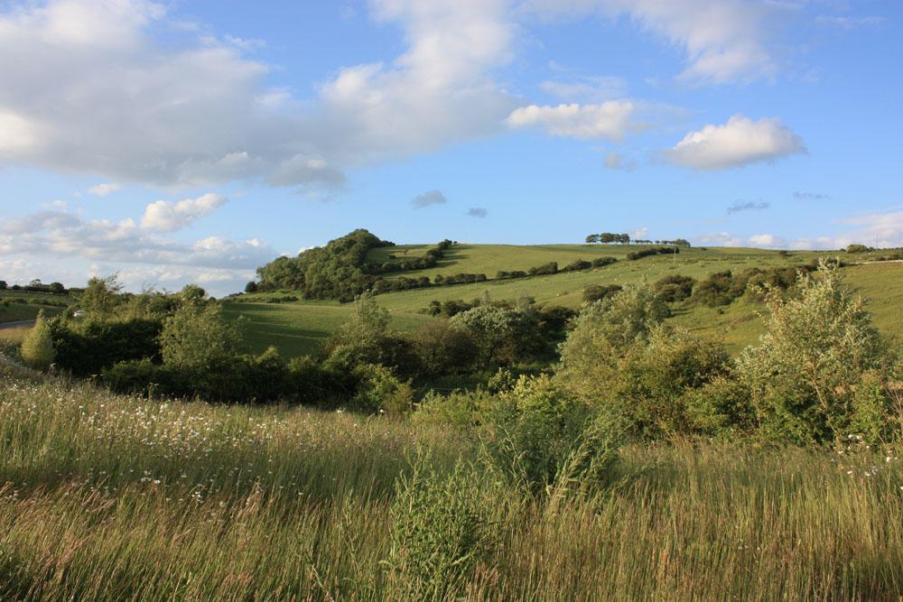 The Heugh, Quarrington Hill
