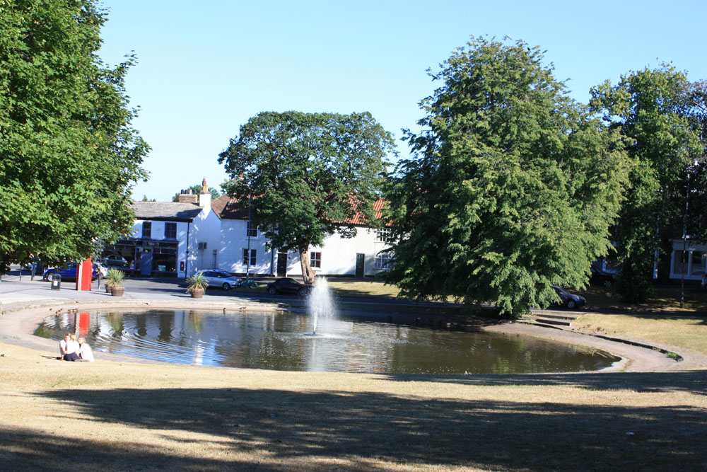 The village pond, Norton.