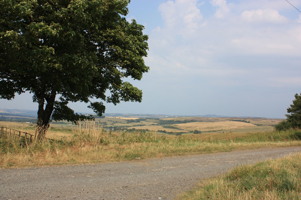 Scenery near Waskerley