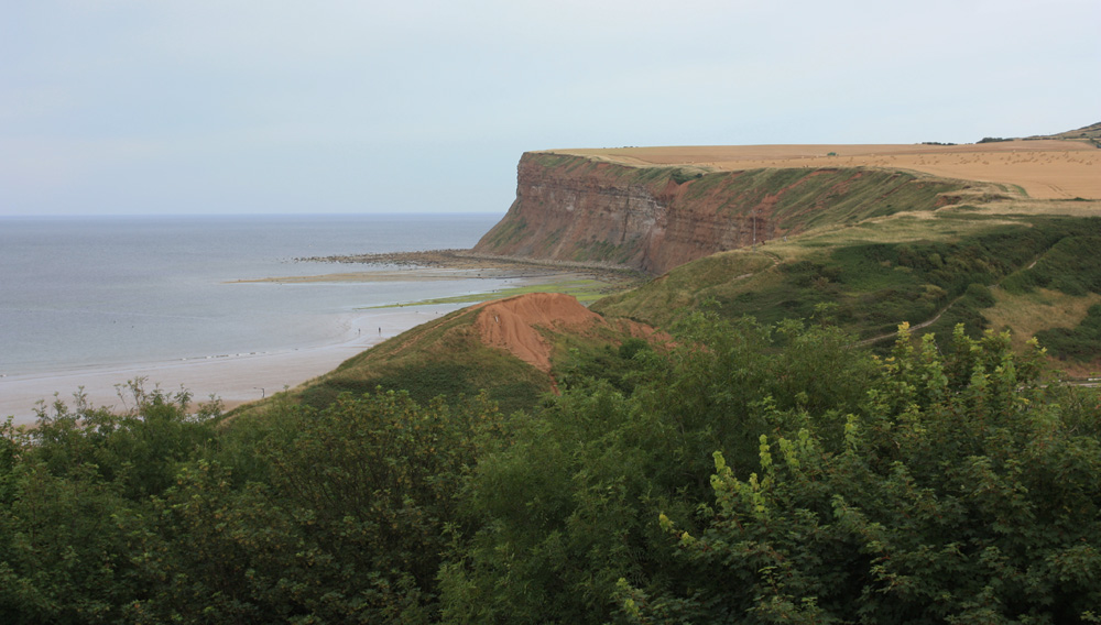 The Cleveland Coast at Saltburn