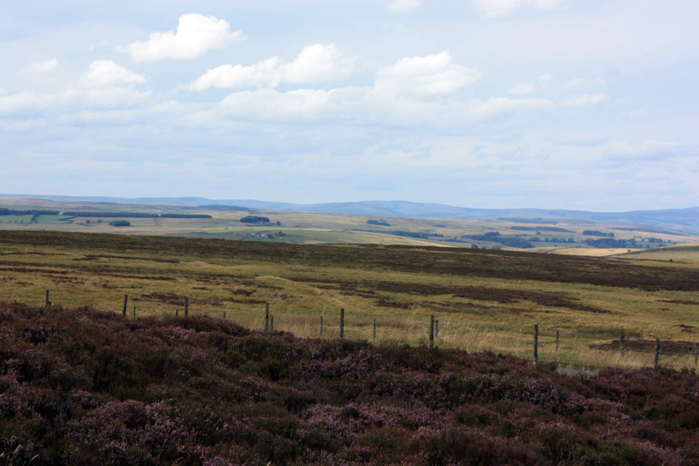 View from Winter's Gibbet