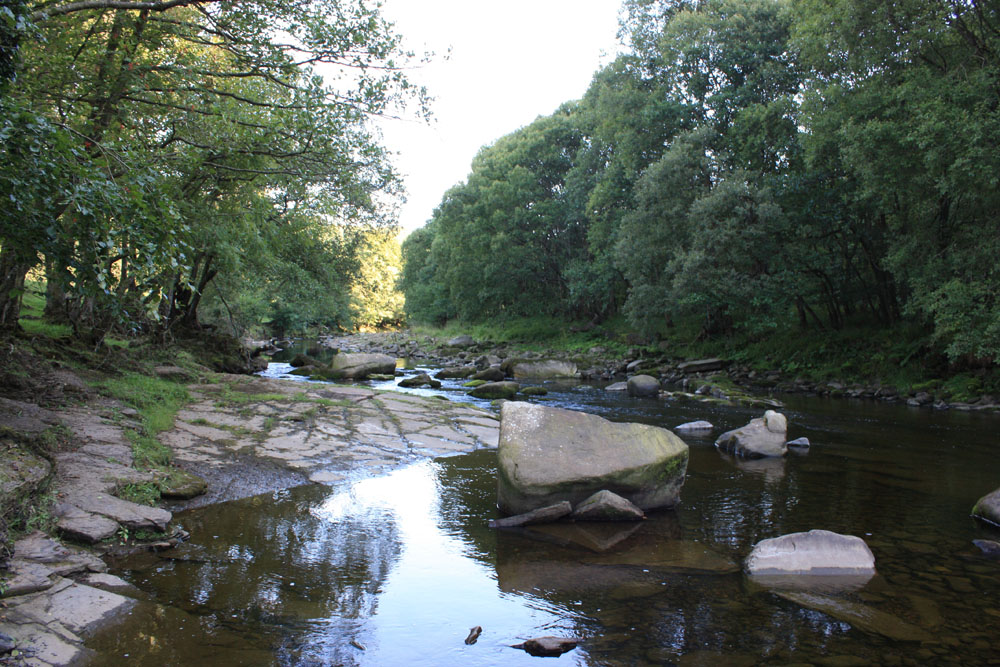 The River Allen at Plankey Mill