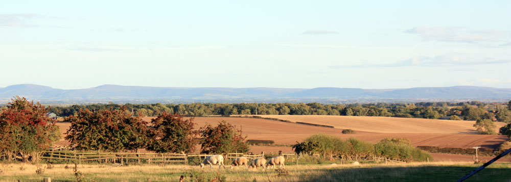 View of the Cleveland Hills from Great Stainton