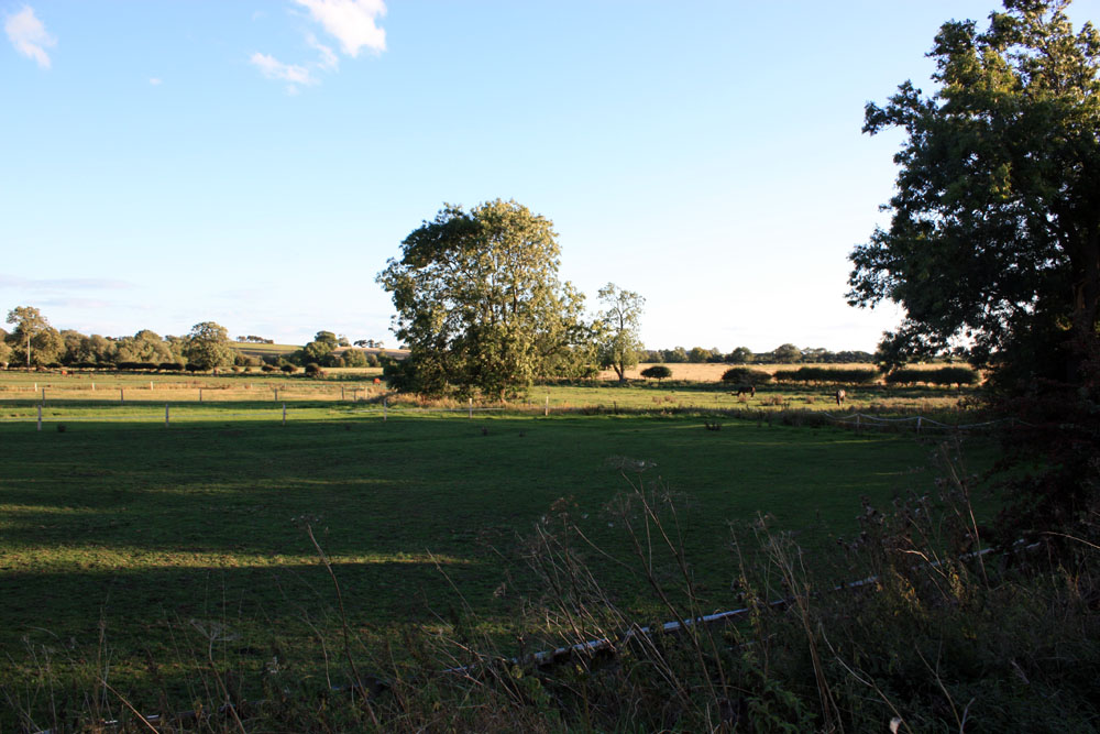 Countryside near Old Stillington