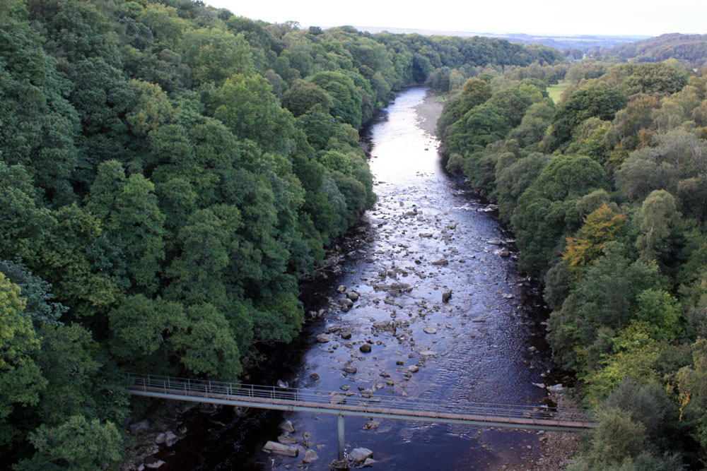 The South Tyne from Langley viaduct.