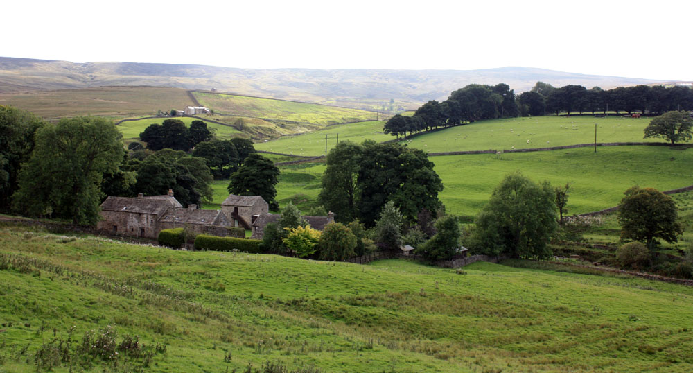 East Allendale