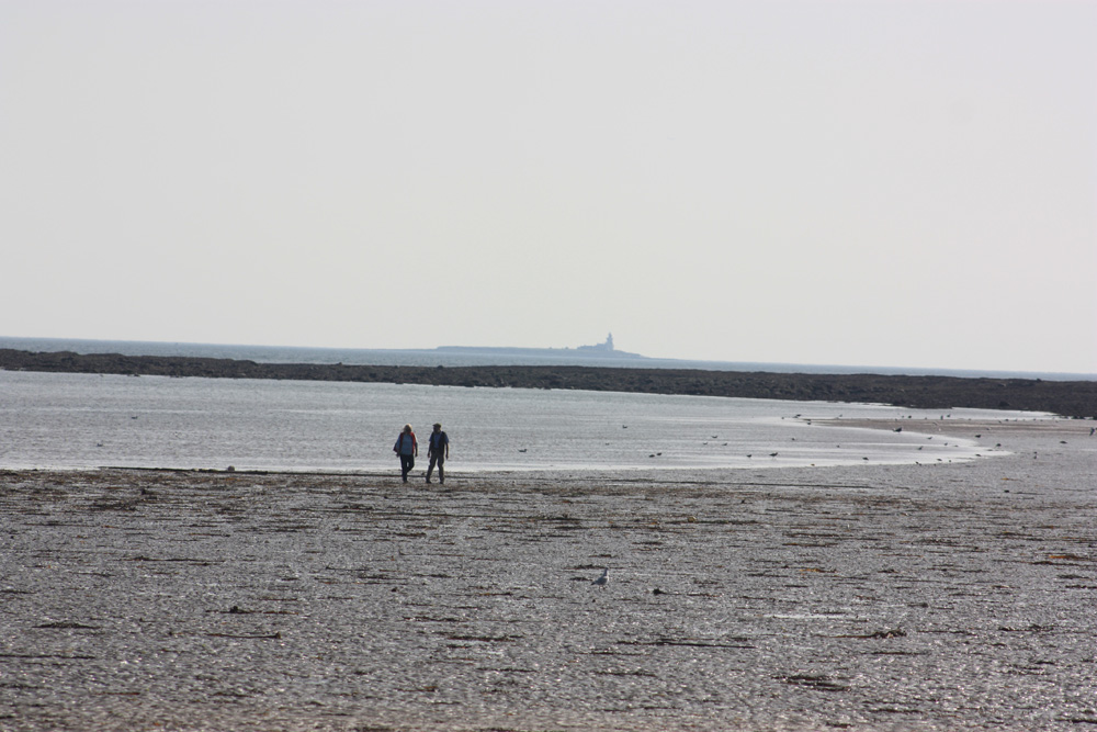 The beach at Boulmer looking south to Coquet Island lighthouse
