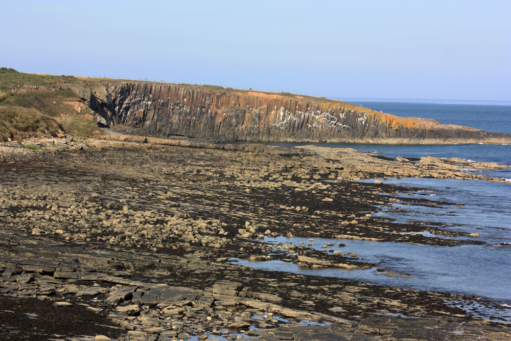 Northumberland coast near Howick