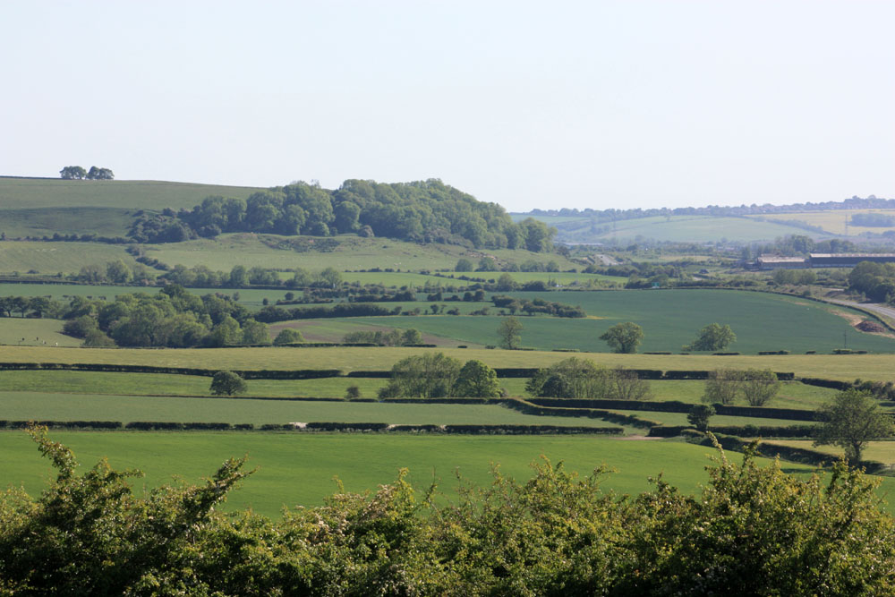 Quarrington Hill