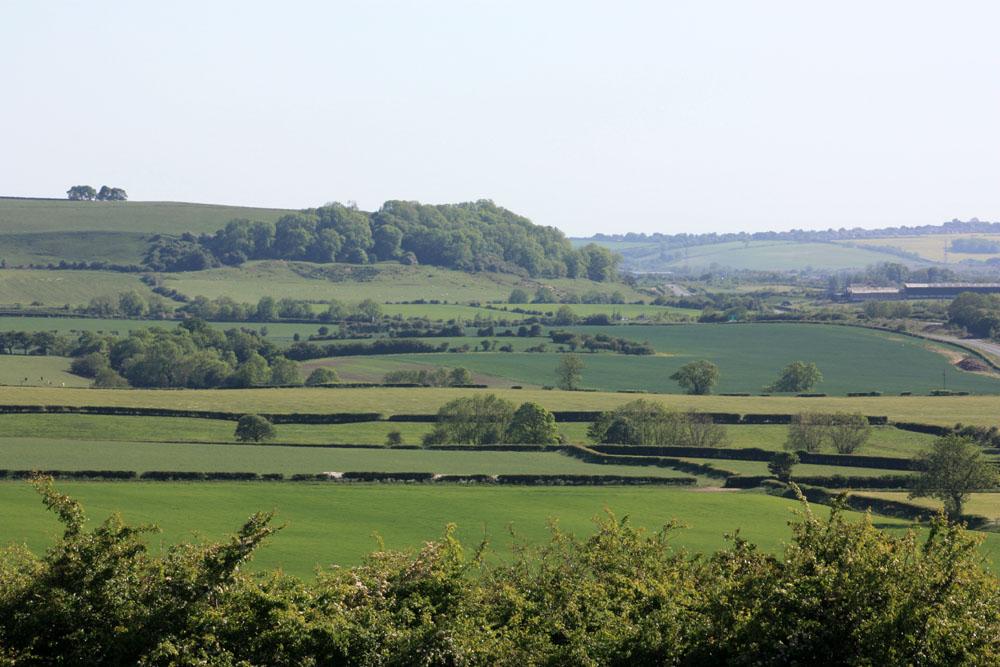 Quarrington Hill