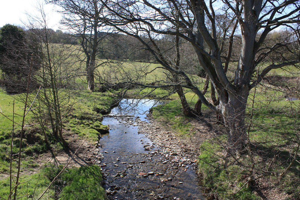 The River Deerness near Waterhouses
