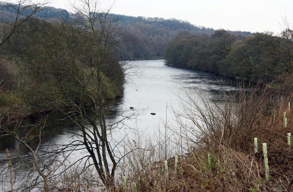 The North Tyne near Wark