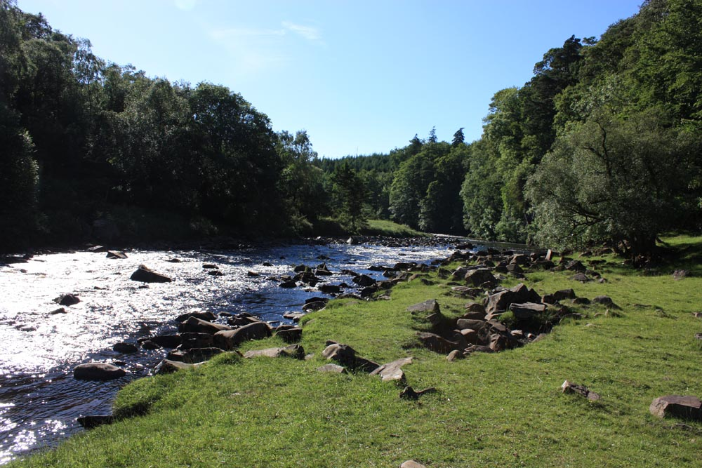 The River Tees near High Force