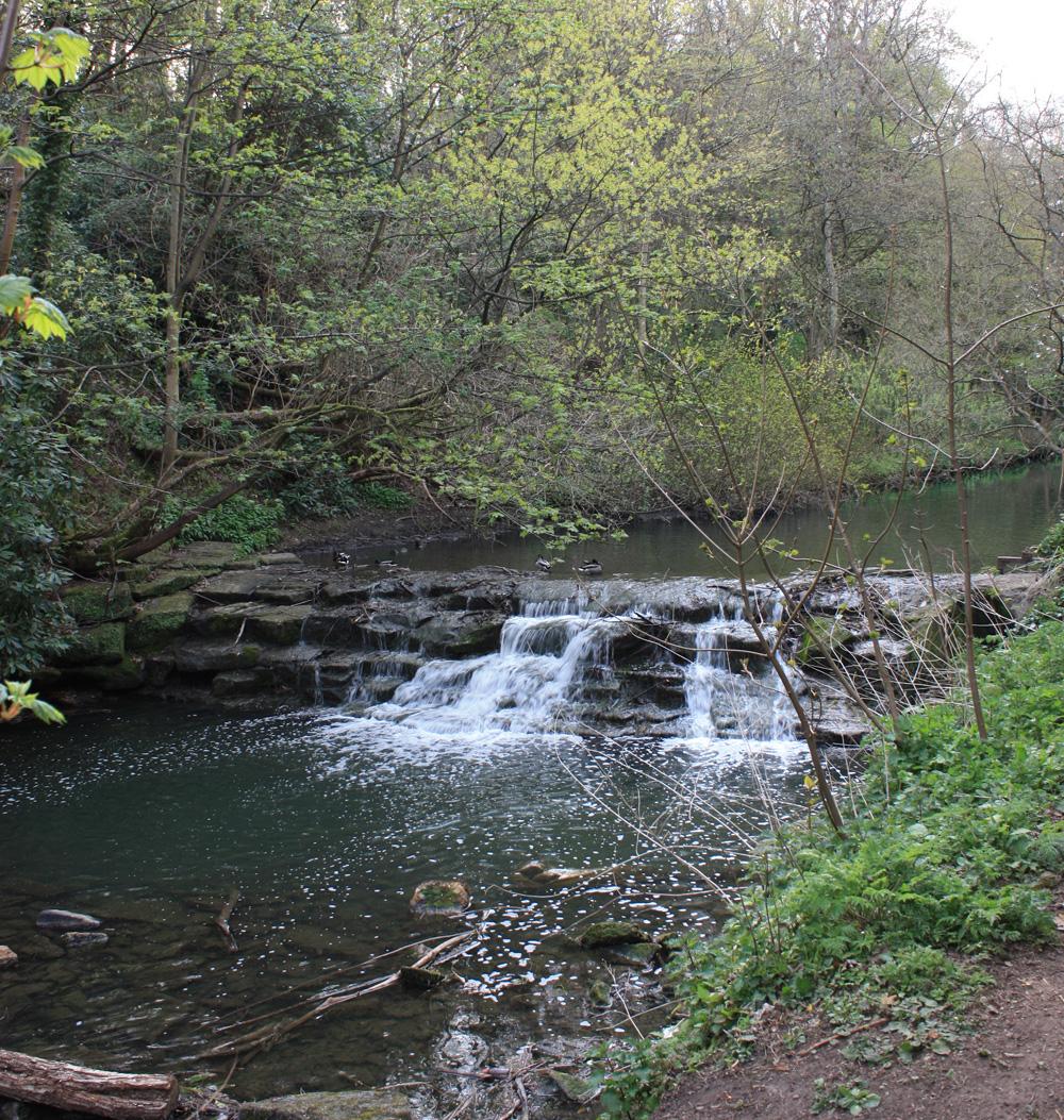 Waterfall, Jesmond Dene