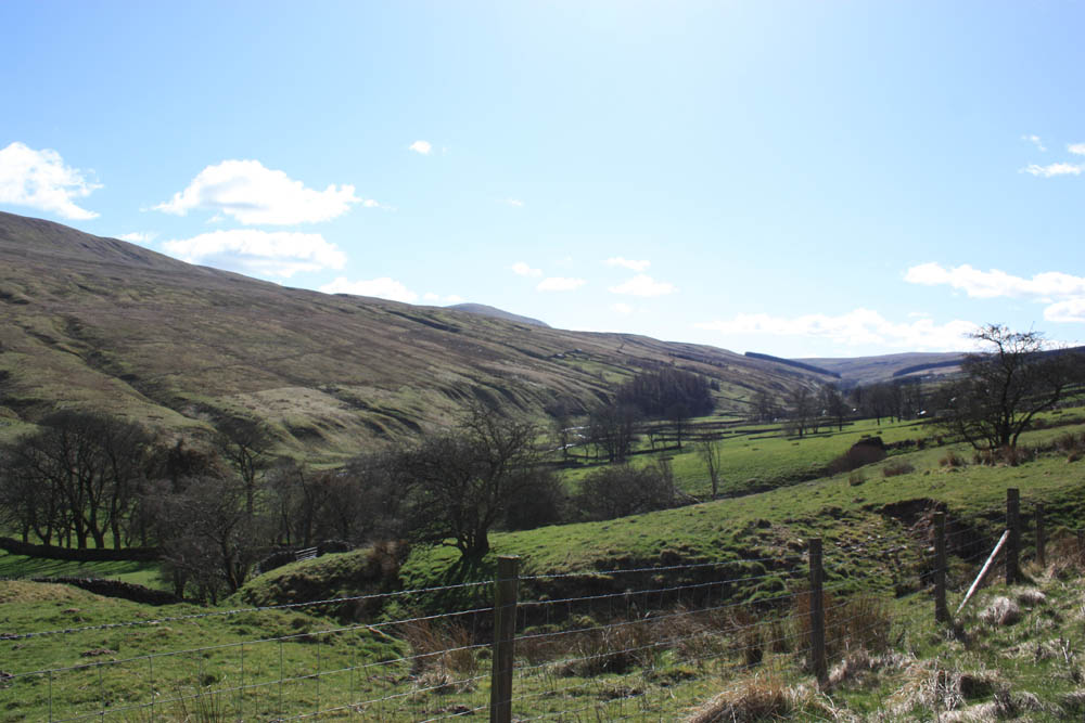Scenery from the Cam Gill Road