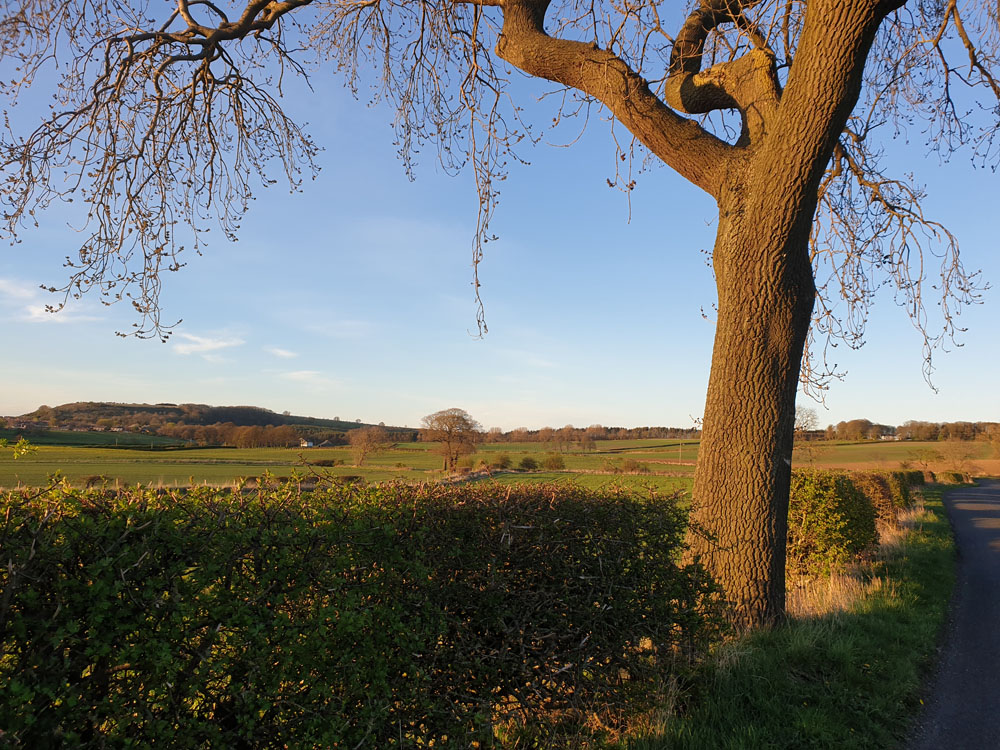 Cookshold Lane, Sherburn village