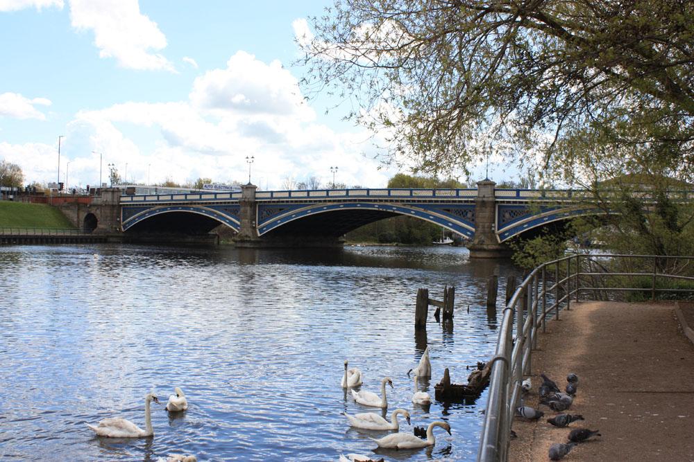 The Victoria Bridge, Stockton