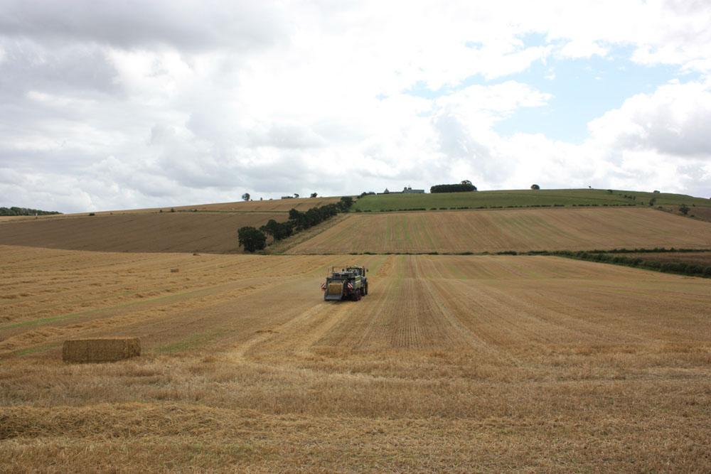 Branxton Hill