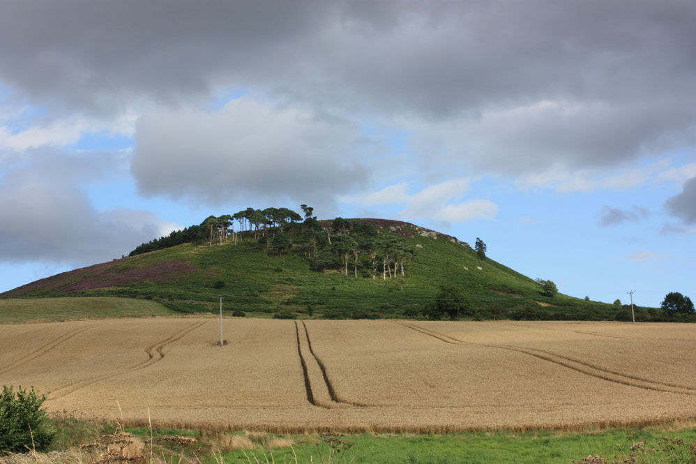 Hill fort site at Old Bewick church