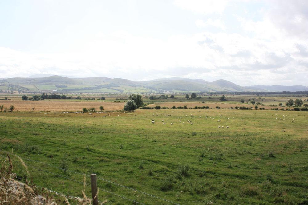 Milfield Plain