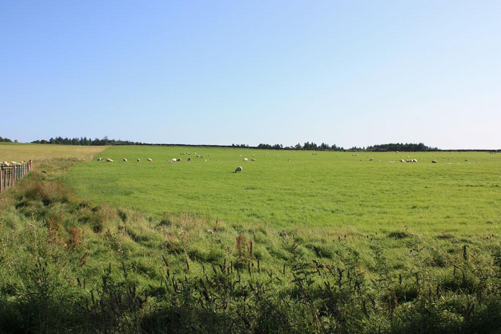 Part of the Otterburn battlefield site