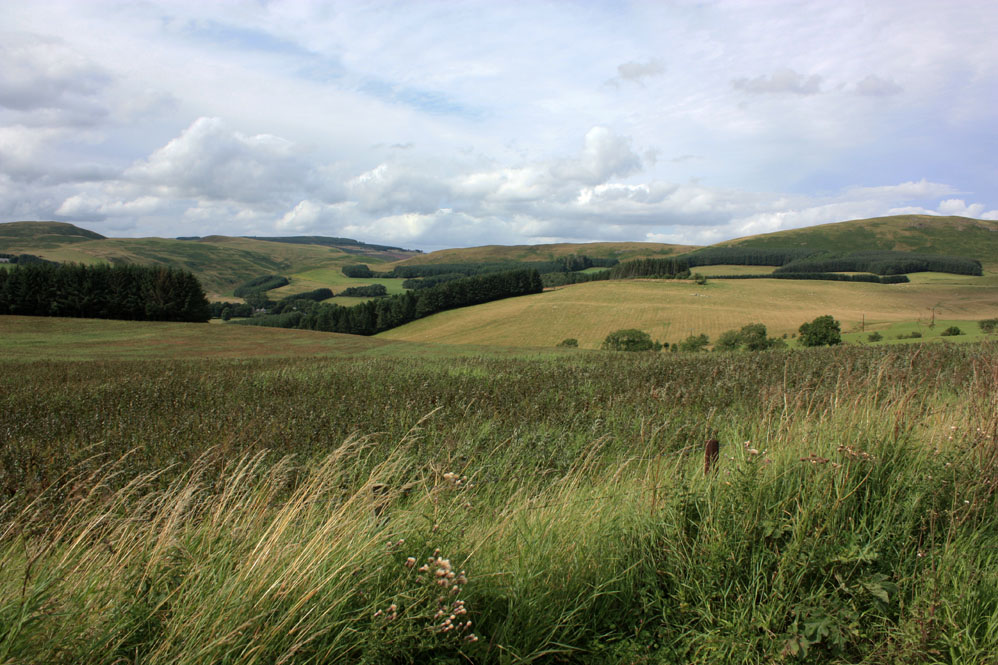 Scenery between Alwinton and Biddlestone