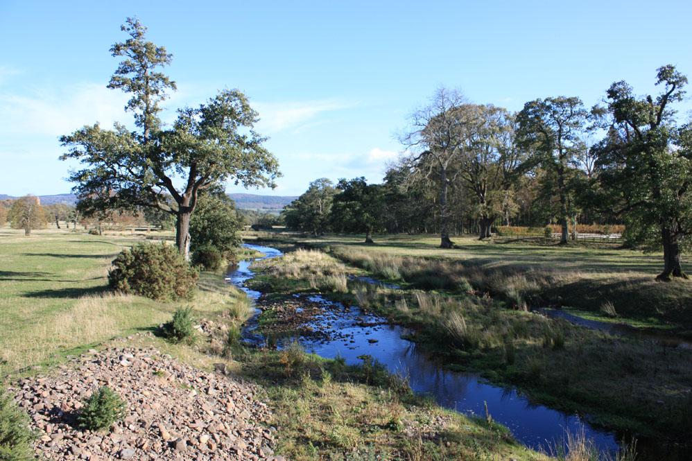 A River Till scene near Chillingham