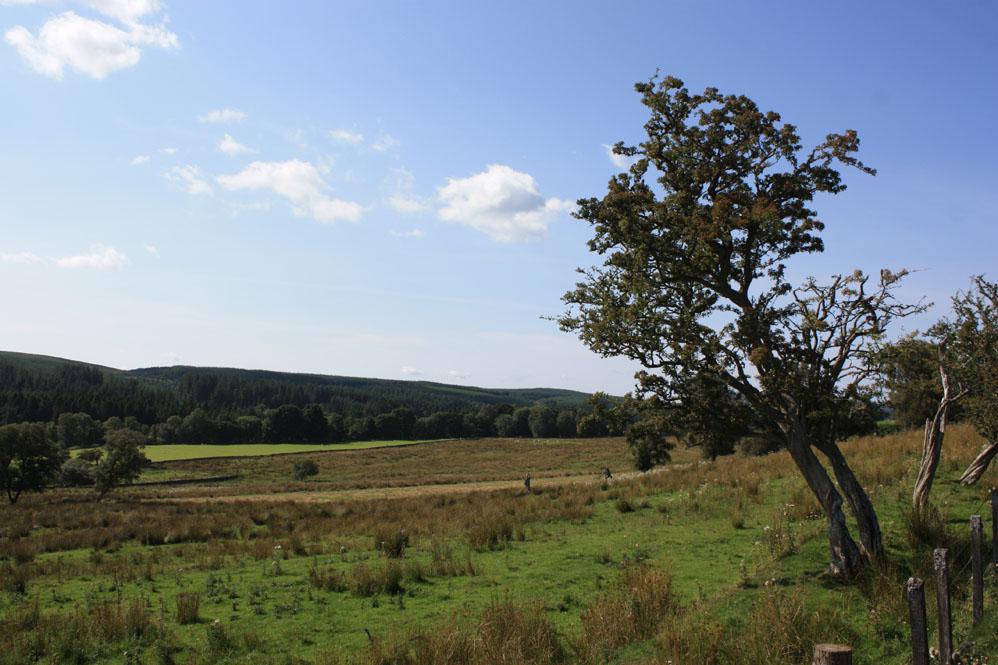 Scenery of the Tarset valley