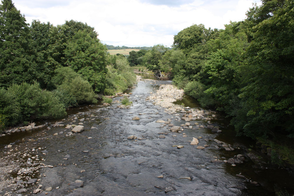 The River Wear at Wolsingham