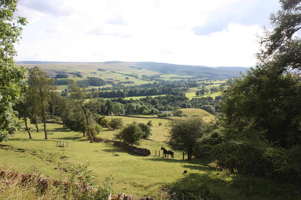 View of Weardale from Crawleyside near Stanhope