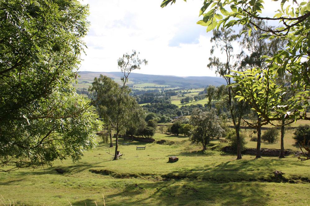 Weardale scenery near Crawleyside
