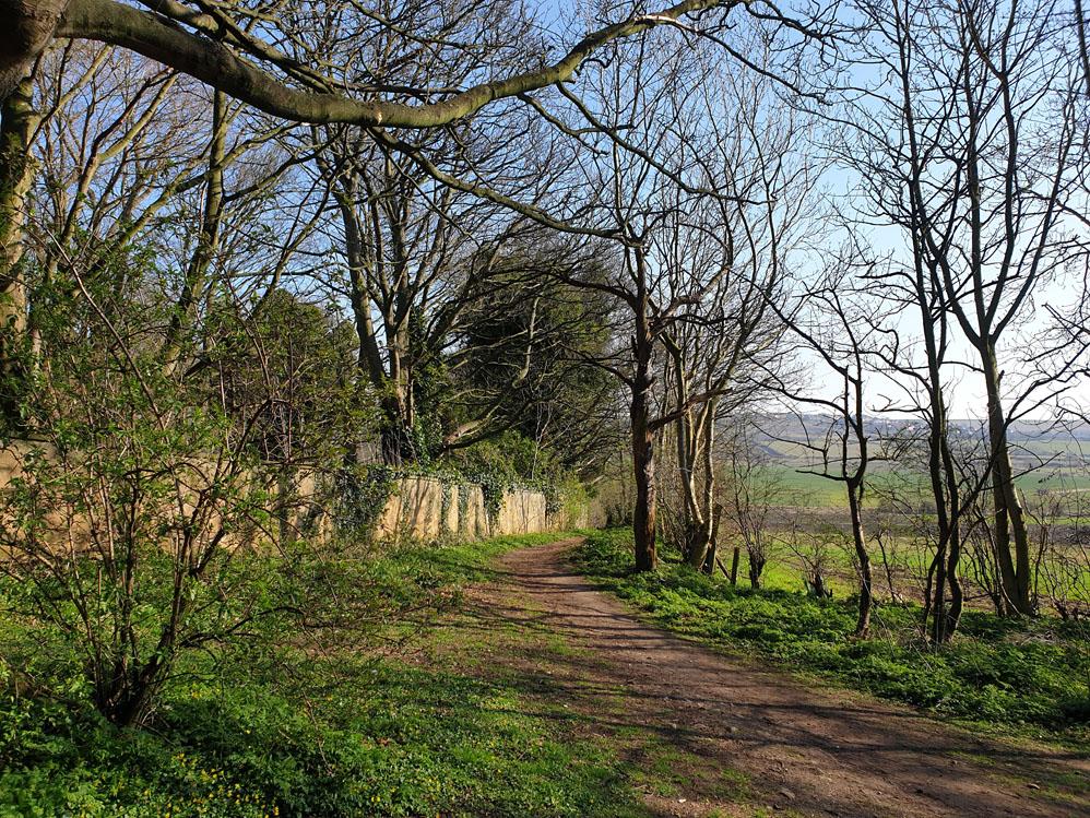 Scenery near Hallgarth, Pittington